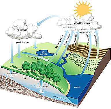 Calibration of a conceptual rainfall-runoff model for ...